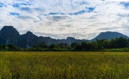 Campo di erba con la montagna ed il cielo Immagini Stock