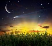 campo di erba contro una scena e una Bi piacevoli di tramonto Fotografie Stock