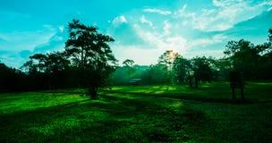 Campo di erba drammatico di tramonto di colori Immagini Stock