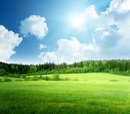 Campo di erba e del cielo immagine stock libera da diritti
