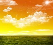 Campo di erba e del tramonto Immagini Stock Libere da Diritti