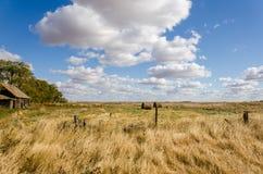 Campo di erba gialla, mucchi di fieno, nuvole bianche fertili, cielo blu, g Immagine Stock