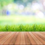 Campo di erba luminoso della molla con il fondo del bokeh di luce solare Fotografie Stock
