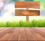 Campo di erba luminoso della molla con il fondo del bokeh di luce solare Fotografia Stock