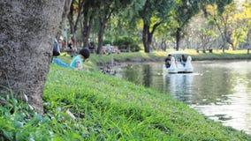 Campo di erba in parco con la barca dell'anatra fotografie stock libere da diritti