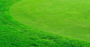 Campo di erba rotondo Fotografia Stock