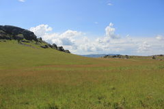 Campo di erba sopra la roccia di Sibebe, Africa del Sud, Swaziland, natura africana, viaggio, paesaggio Fotografie Stock