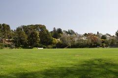 Campo di erba verde Immagine Stock Libera da Diritti