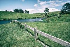Campo di erba verde in campagna nel tono d'annata Fotografia Stock Libera da Diritti