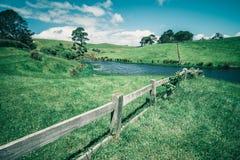 Campo di erba verde in campagna nel tono d'annata Immagine Stock Libera da Diritti
