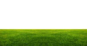 Campo di erba verde con copyspace bianco Immagini Stock Libere da Diritti