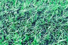 campo di erba verde del pallone da calcio, linea di calcio Fotografia Stock