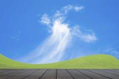 Campo di erba verde e cielo blu luminoso Immagini Stock