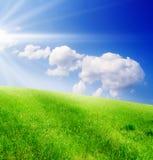 Campo di erba verde e del cielo nuvoloso blu Immagini Stock
