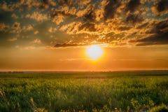 Campo di erba verde e del tramonto con le nuvole tempestose Fotografia Stock