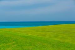 campo di erba verde fresco splendido contro il fondo tranquillo del cielo blu e dell'oceano Immagini Stock Libere da Diritti