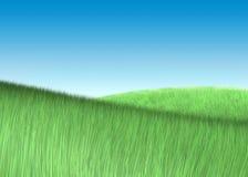 Campo di erba verde sotto il cielo Fotografia Stock