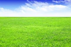 Campo di erba vuoto con cielo blu come fondo Immagini Stock Libere da Diritti