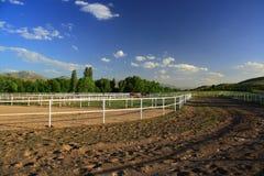 Campo di formazione per funzionamento del cavallo Fotografie Stock Libere da Diritti