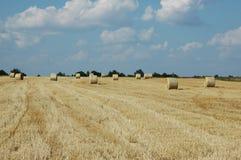 Campo di frumento 2 immagini stock libere da diritti