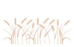 Campo di frumento Siluette di segale illustrazione vettoriale