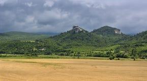 Campo di grano con il contesto montagnoso Fotografia Stock Libera da Diritti