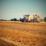 Campo di grano maturo dorato di raccolto meccanico di agricoltura della mietitrice Trattore - fieno e paglia, fondo tradizionale  Fotografie Stock