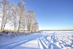 Campo di inverno sotto Immagini Stock Libere da Diritti
