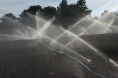 Campo di irrigazione Immagine Stock