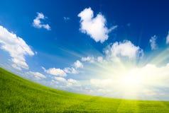 Campo di lino e del cielo Fotografie Stock Libere da Diritti