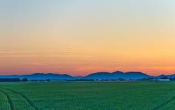 Campo di mais al crepuscolo in Palatinato Fotografie Stock
