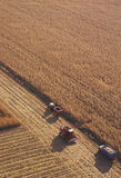 Campo di mais con la strumentazione pesante dell'azienda agricola Immagine Stock
