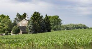 Campo di mais della Pensilvania e vecchio granaio di pietra Immagini Stock Libere da Diritti