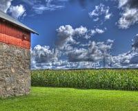 Campo di mais e granaio rosso in HDR Fotografia Stock