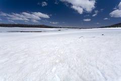 Campo di neve Fotografie Stock Libere da Diritti