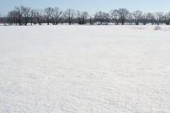 Campo di neve Immagini Stock Libere da Diritti