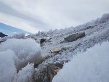 Campo di neve del ghiaccio Fotografie Stock