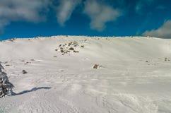 Campo di neve in montagna Fotografia Stock Libera da Diritti