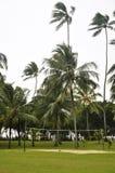 Campo di pallavolo sul litorale fotografia stock libera da diritti