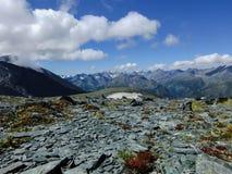 Campo di pietra il Altai Immagine Stock Libera da Diritti