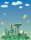 Campo di Printgrass con i fiori Immagine Stock