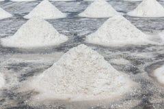 Campo di produzione del sale marino in campagna della Tailandia, sale indus Fotografia Stock Libera da Diritti