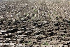 Campo di recente arato con suolo bagnato pronto per ulteriori lavoro agricolo e piantatura immagini stock libere da diritti