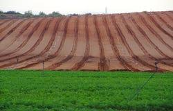 Campo di recente arato dell'azienda agricola Immagine Stock Libera da Diritti