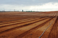 Campo di recente arato dell'azienda agricola Fotografie Stock Libere da Diritti