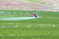 Campo di spruzzatura dall'aria. Fotografie Stock Libere da Diritti