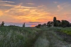Campo di tramonto fotografia stock libera da diritti