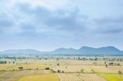 Campo do arroz com montanha Fotografia de Stock
