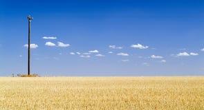 Campo do céu azul Fotografia de Stock Royalty Free