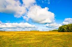 Campo do centeio colhido perto da cidade de Tarusa, Rússia Imagens de Stock
